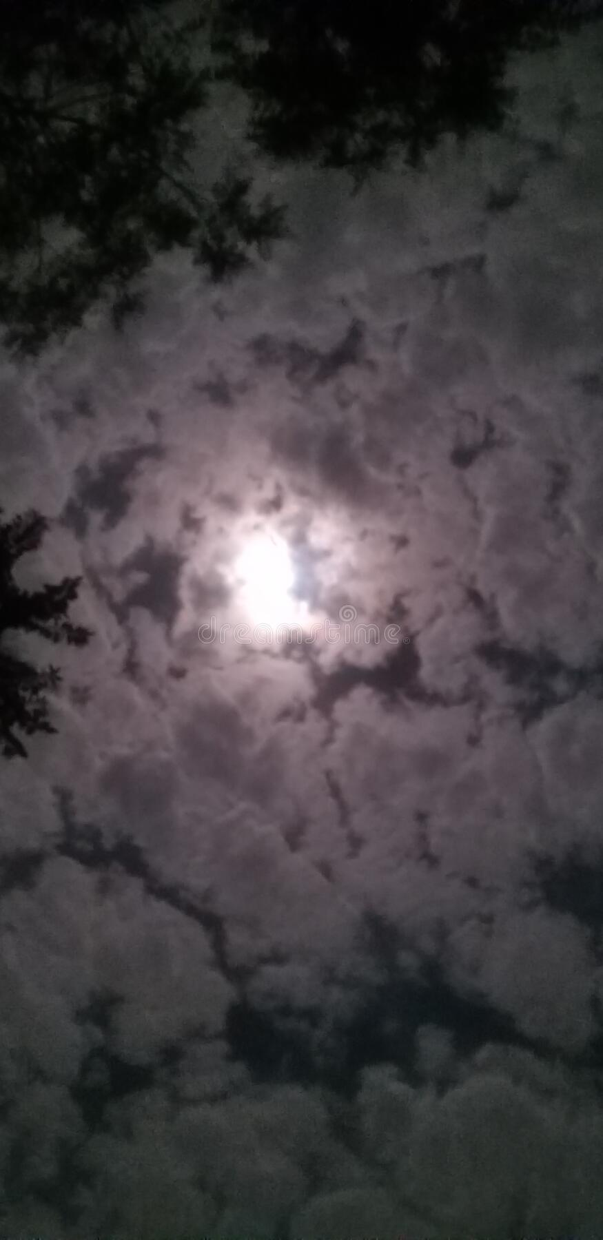 Fool moon night and clouds royalty free stock images
