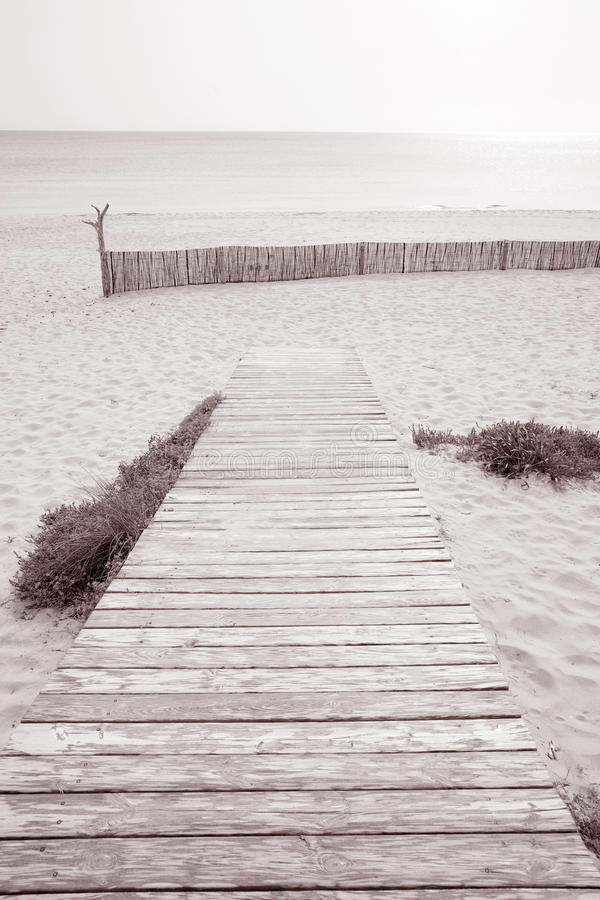 Foopath na Valencians plaży; Formentera; Balearic wyspa; Hiszpania fotografia stock