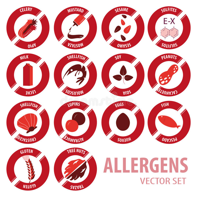 Foor allergies icons vector set. Food allergies icons vector set vector illustration