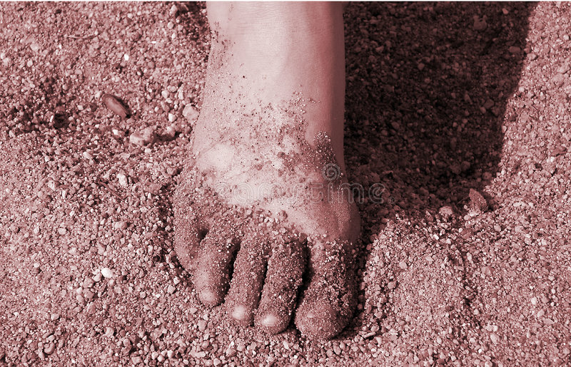 Download Foot stock image. Image of fingers, beach, foot, fingernails - 4493