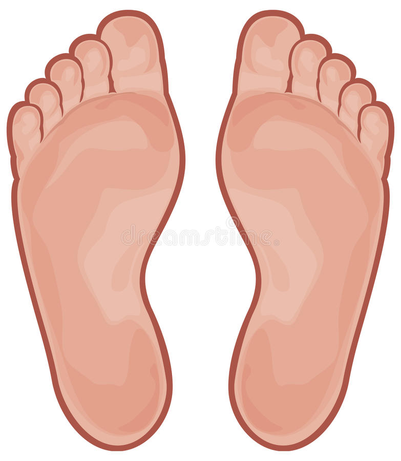 Free Foot Stock Photography - 23646202