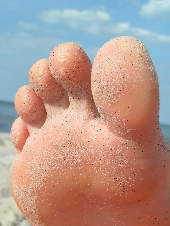 Download Foot stock image. Image of foot, health, human, parts - 2945099