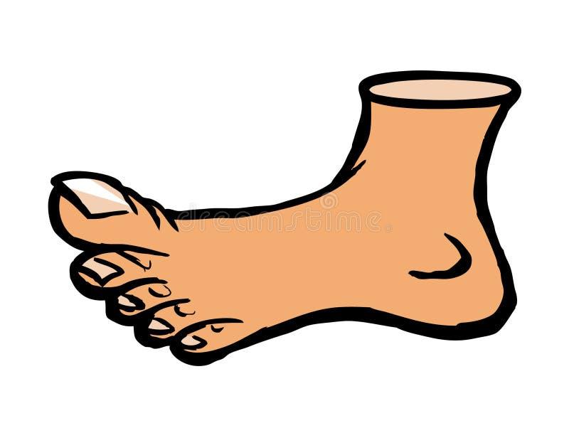 Foot royalty free illustration