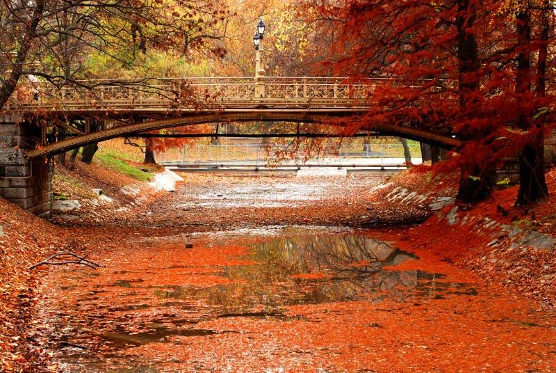 Download Foot bridge stock photo. Image of lights, river, walk - 9125038