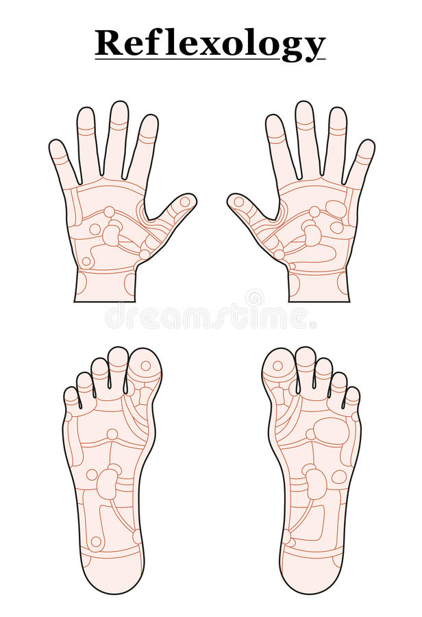Foot hand reflexology outline stock vector illustration of download foot hand reflexology outline stock vector illustration of pedicurist massage 48582828 ccuart Image collections