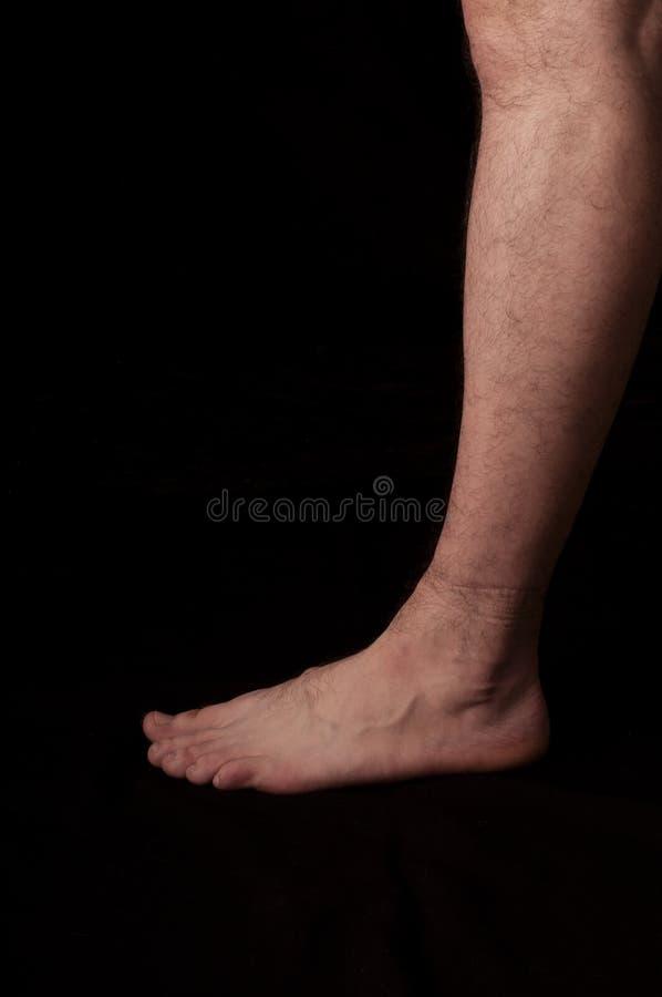 Foot royalty free stock photo
