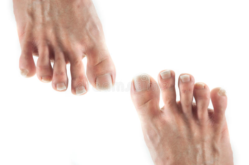 Foot Isolate Royalty Free Stock Photography