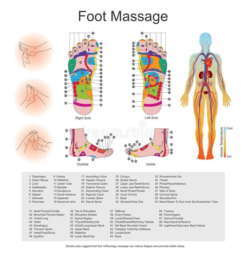 Foot massage. stock illustration. Illustration of point - 83394271