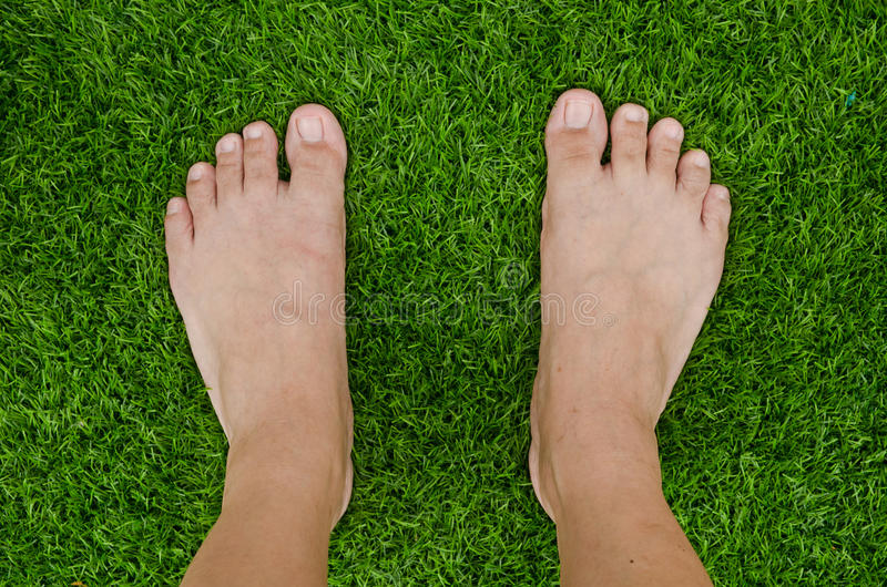 Download Foot over green grass stock image. Image of care, leisure - 33241051
