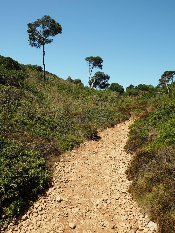 Foot path on mallorca to cala marmols stock photo