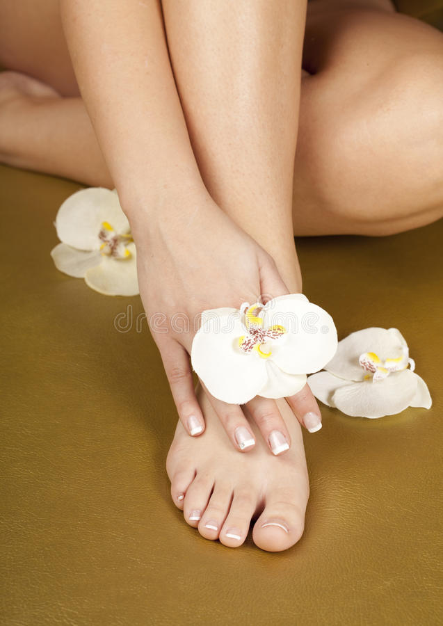Download Foot After Pedicure And French Manicure Nails Stock Photo - Image: 25005012