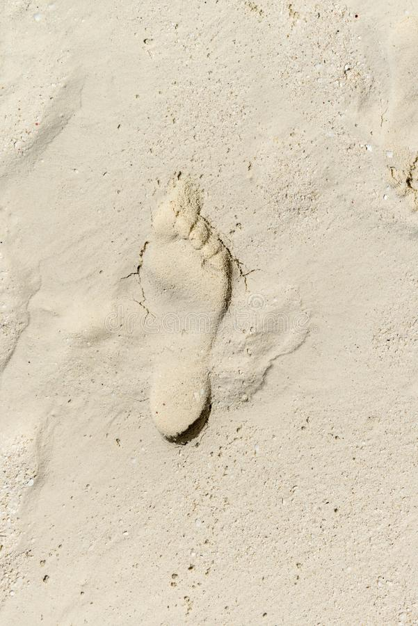 Foot print at the beach royalty free stock photography