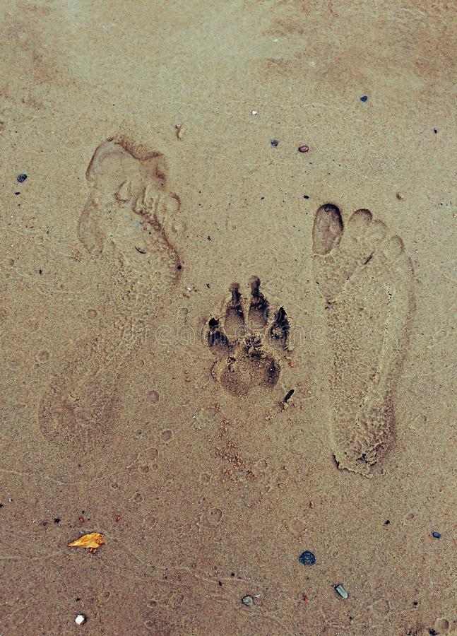 Foot print - he, she and dog stock photos