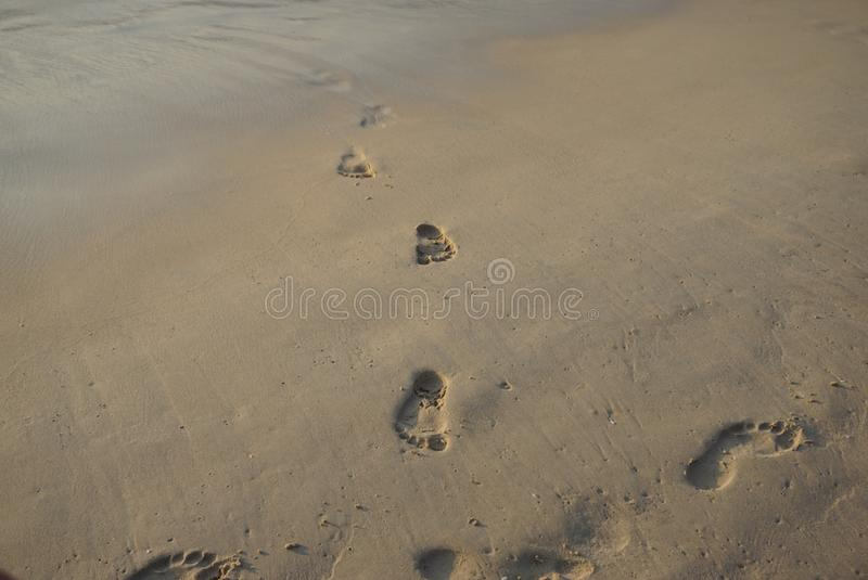 Foot prints without feet on a beach. Foot prints without feet on a beach with river waves. Waves trying to vanish the foot prints stock photos