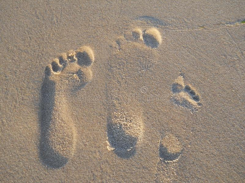 Foot prints on sand royalty free stock photo