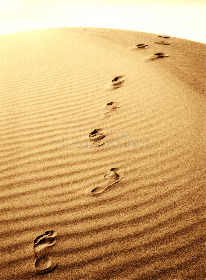 Free Foot Prints In The Sand Royalty Free Stock Image - 94846