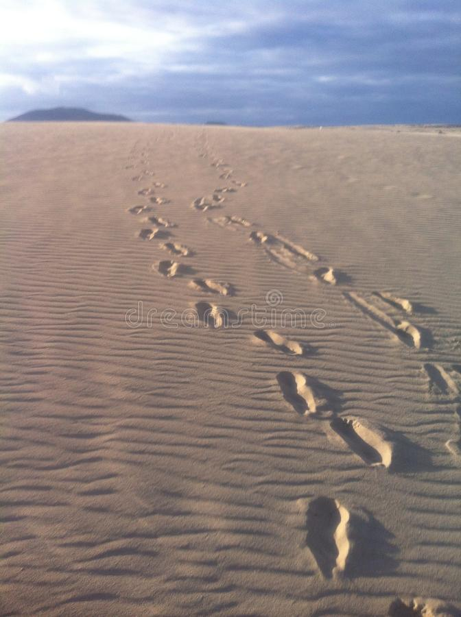 Foot prints in the sand dunes fuerteventura Canary Islands stock photos