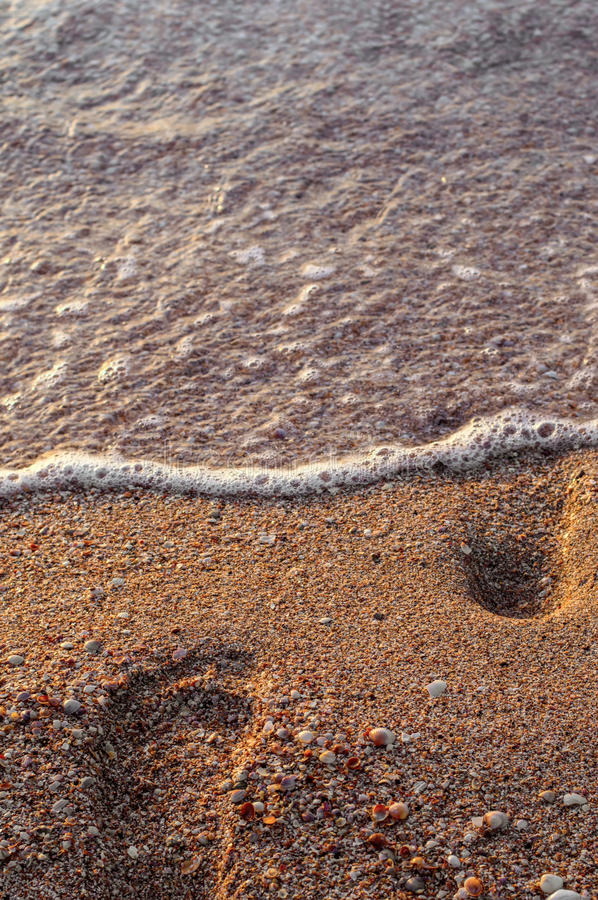 Foot prints in the sand, the sea coast. stock photos