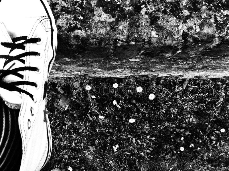 Foot on a step royalty free stock image