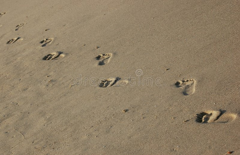 Foot steps royalty free stock image