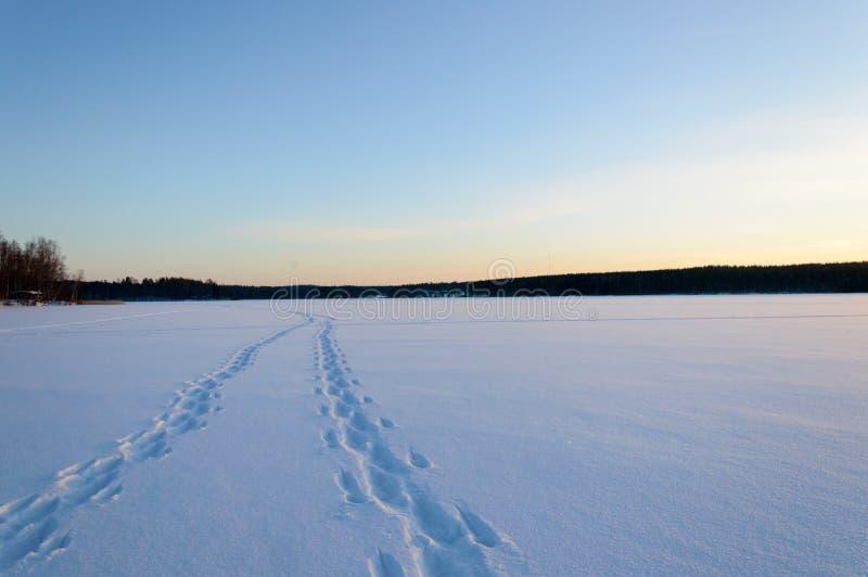 Foot steps on skandinavien winter frozen lake stock images