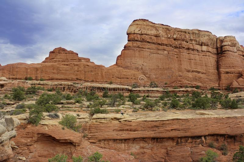 Foot Trail in The Needles, Canyonlands National Park, Utah, USA. Its signature features colorful sandstone spires hundreds them poking desert floor stock photography