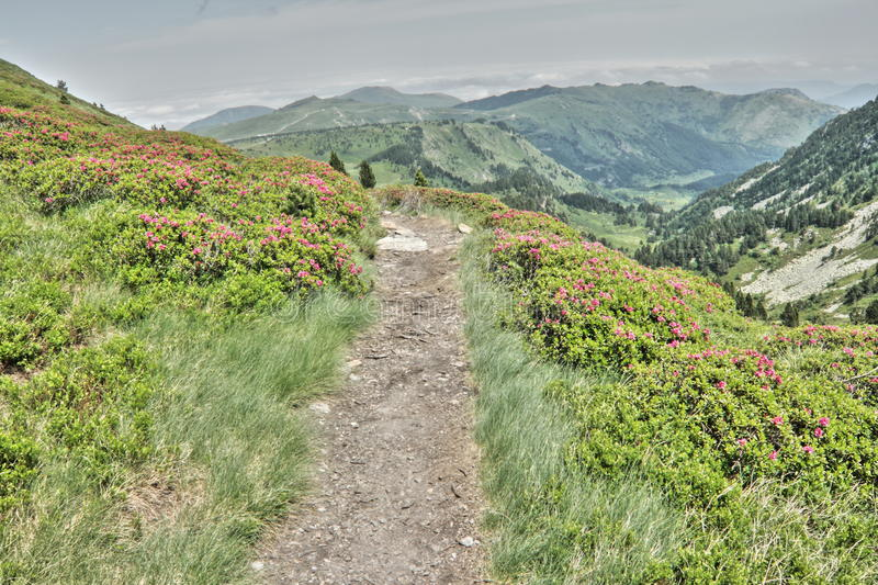 Footath in Ariege, France. Footpath in Pyrenees, Donezan in Ariege, Occitanie in south of France royalty free stock photos