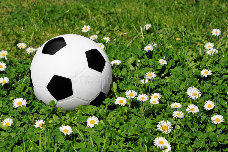 Download Football stock image. Image of bliss, playground, flowers - 24908939