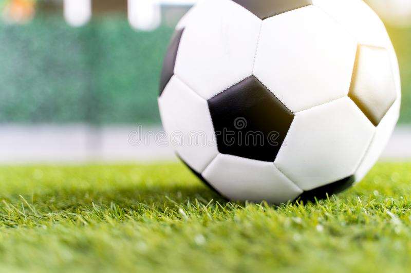 Football ball on green grass field background royalty free stock photography