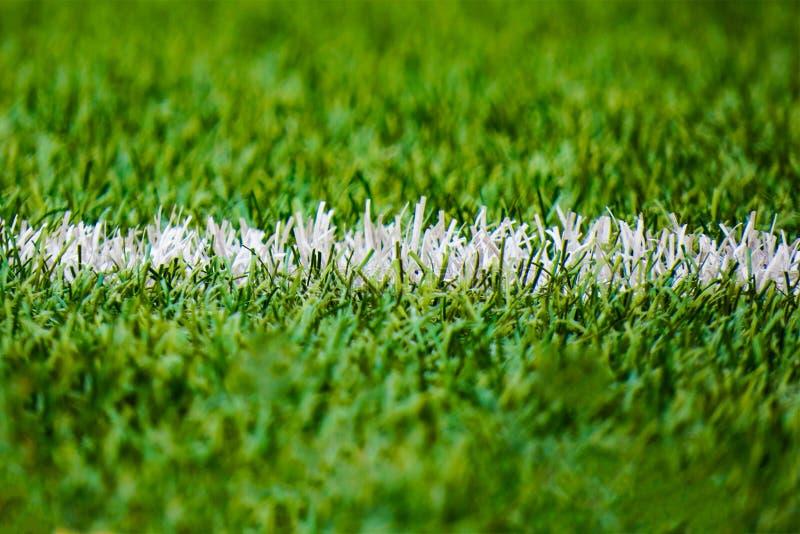 Football court pitch grass pole lines closeup stock image