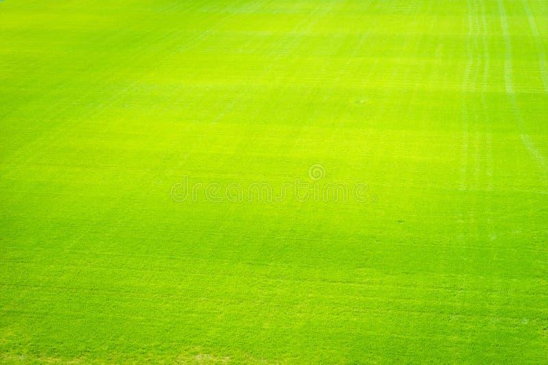 Seamless Vinyl Photography Backdrop Football Stadium Match: Football Field Background Stock Photo