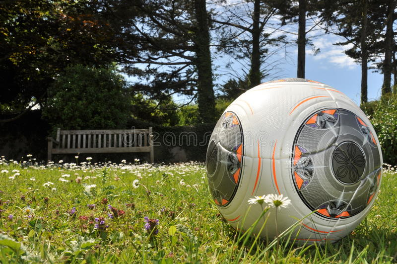 Football in Garden royalty free stock images