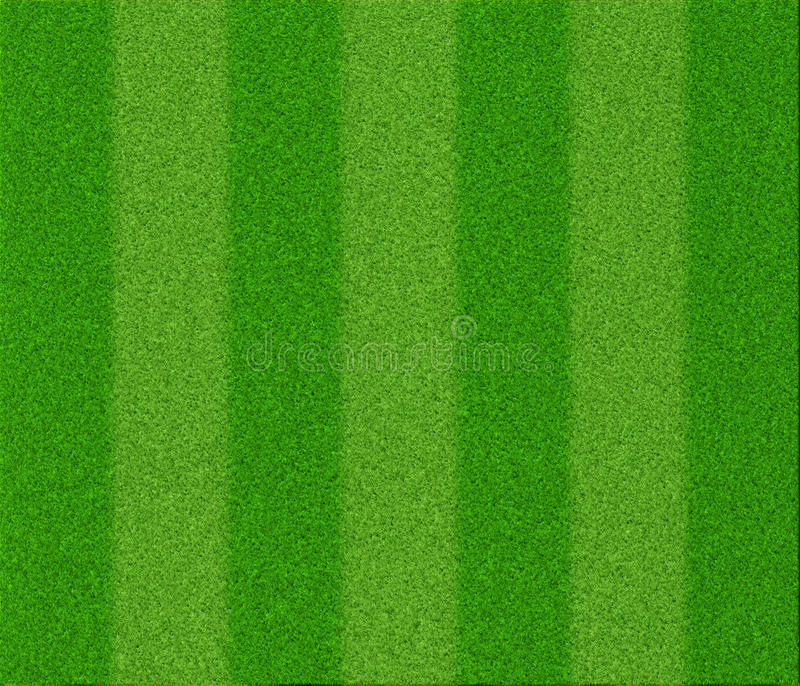 Football grass texture royalty free illustration