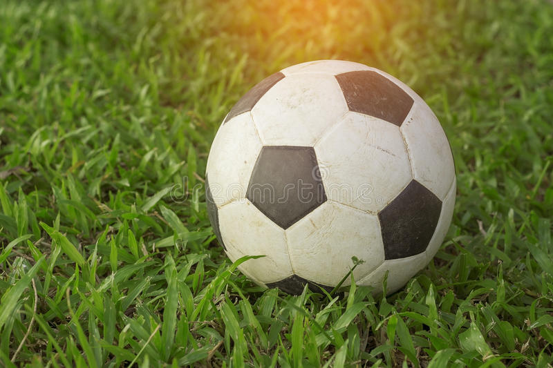 Football on the green grass royalty free stock photography