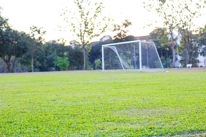 Football ground grass, green royalty free stock images