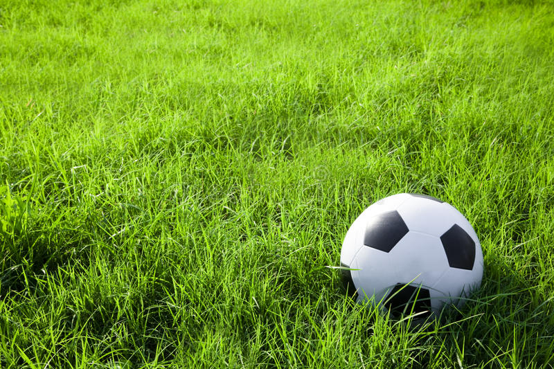 Football or soccer ball on the green field royalty free stock photography