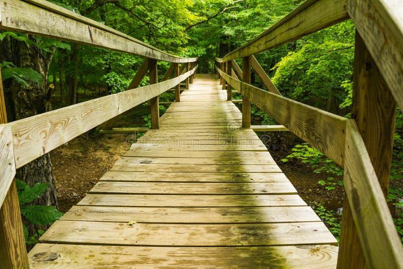 Footbridge вдоль аппалачского следа - 2 Hiker стоковые фото