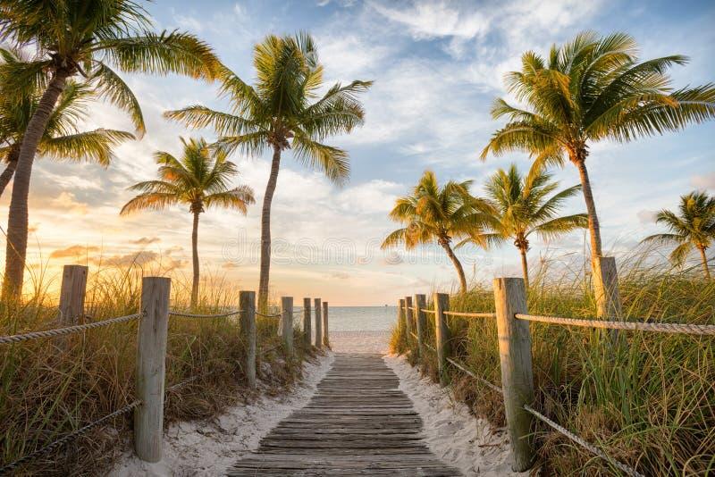 Footbridge к пляжу стоковое фото