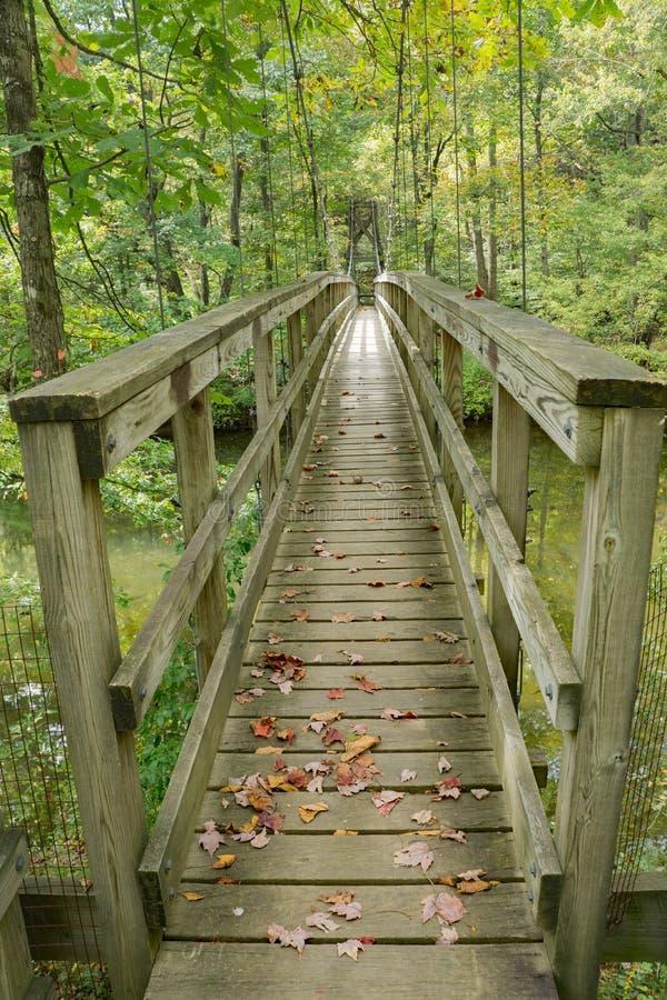 Footbridge на аппалачском следе стоковые изображения rf