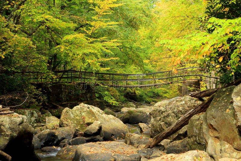 Footbridge потока горы стоковая фотография