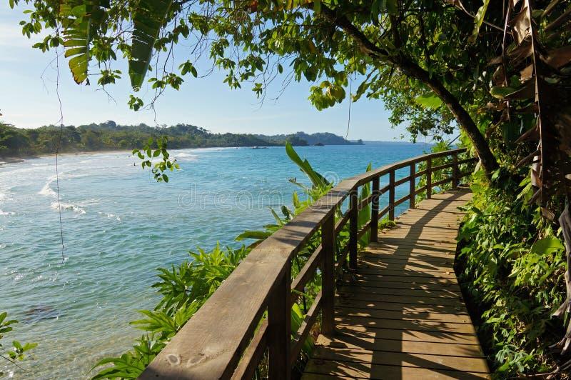 Footbridge по побережью внутри карибский остров стоковые изображения rf