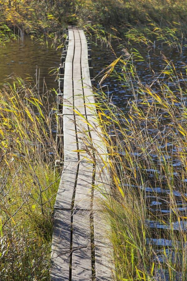 Footbridge fotografia stock