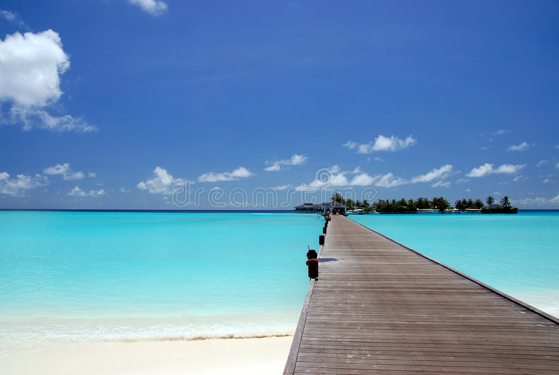 Download Footbridge stock photo. Image of caribbean, coconut, beach - 2622148