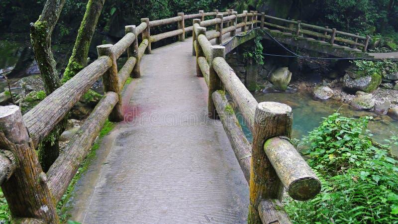 Footbridge стоковые фотографии rf