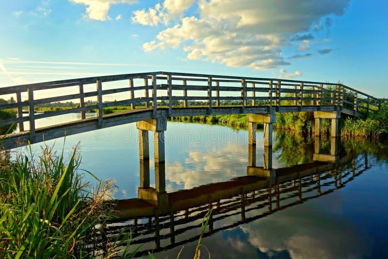 Footbridge серого бетонного основания деревянный между зеленой травой во время дневного времени стоковые изображения rf