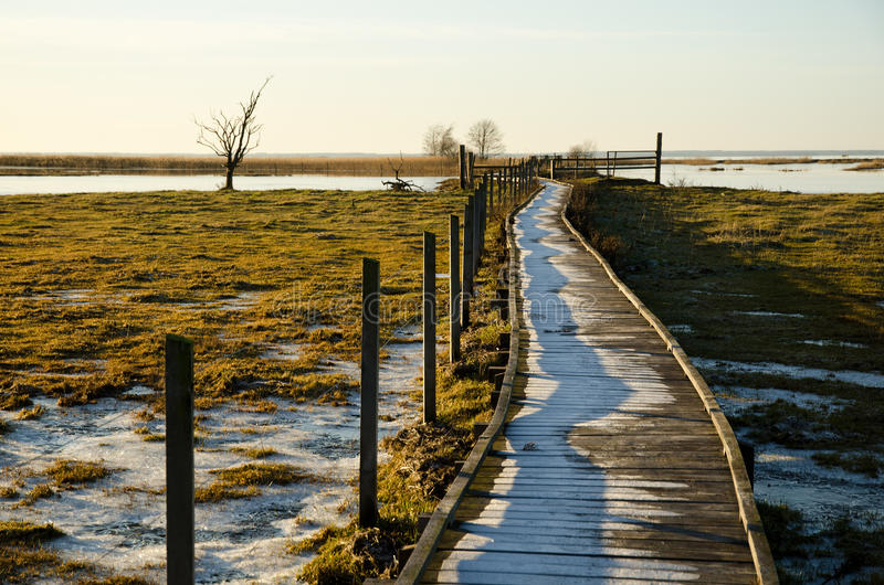 Footbridge for disabled. A frosty footbridge suitable for disabled persons leading through the wetlands stock photography