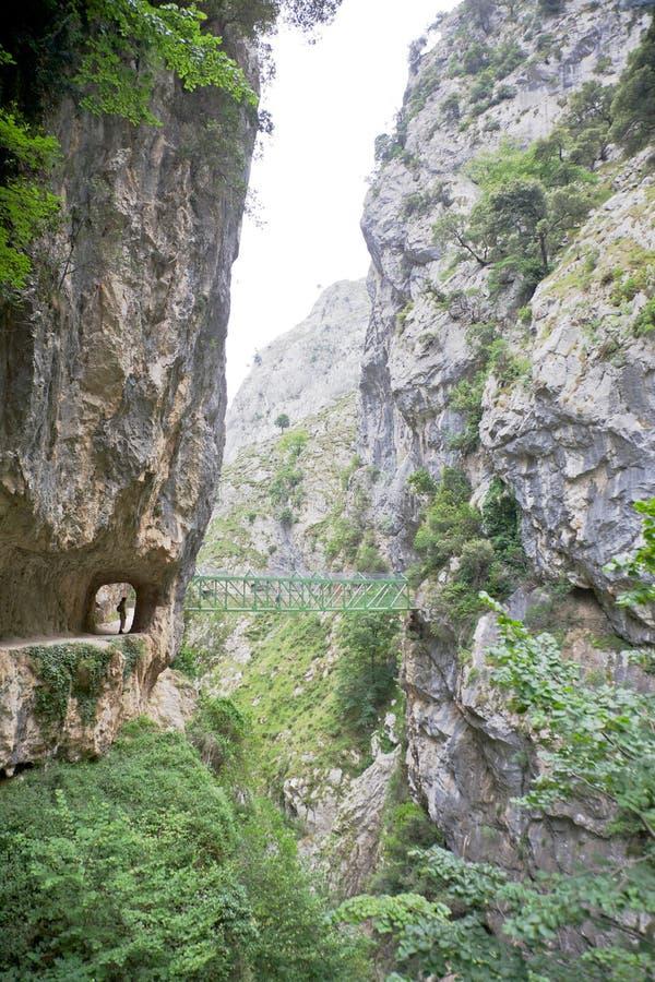 Footbridge at Gorge of River Cares stock photos
