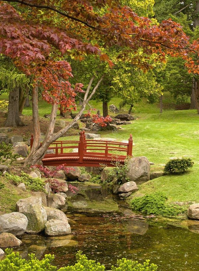 Footbridge in a japanese garden stock image