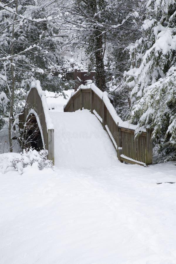footbridge krajobrazu. obraz stock