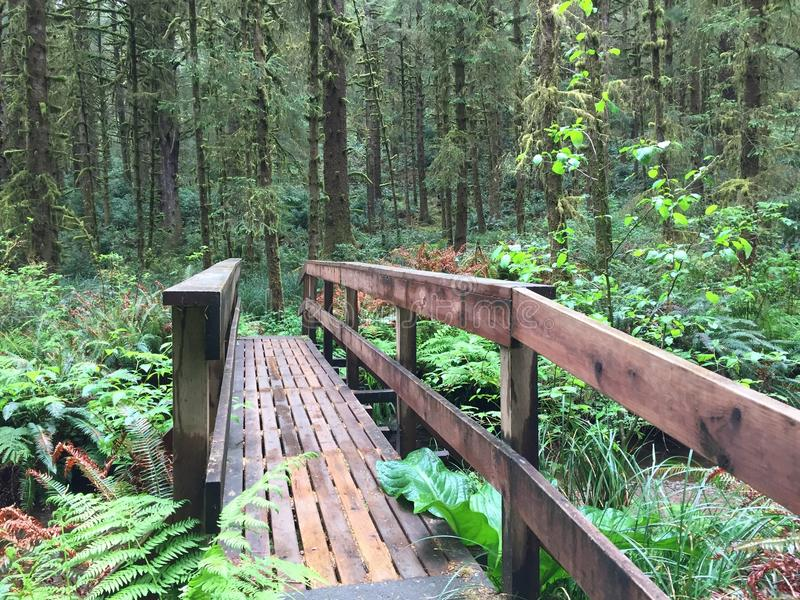 Footbridge off Oregon Coast stock images